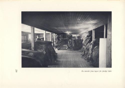 Eliasson 28