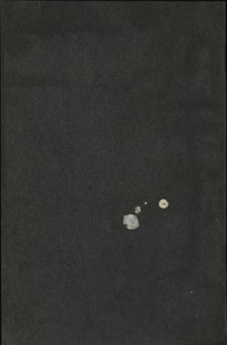 1931_LL_prislista_13