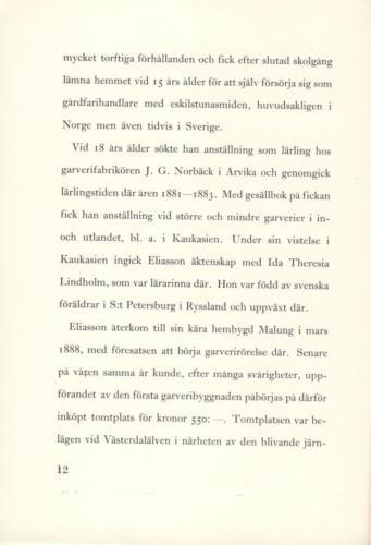 Eliasson 11