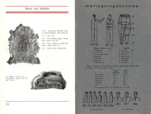 Svensk skinnindustri 12
