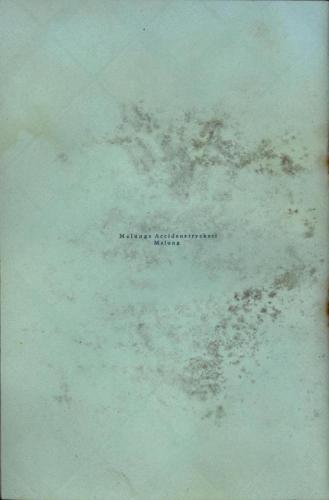 Katalog Lissmans 22