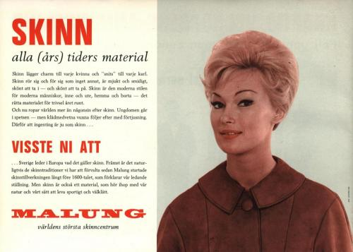 Malungs skinnindustriförening 08